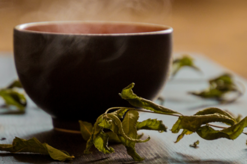 Stoffwechsel-Booster Grüner Tee